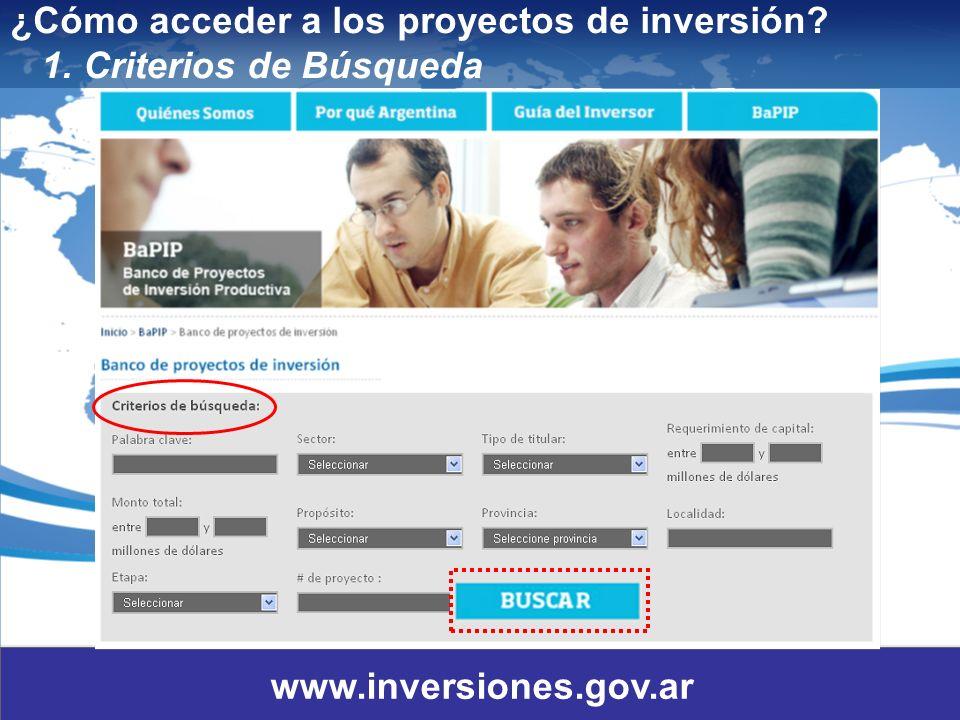 12 ¿Cómo acceder a los proyectos de inversión? 1. Criterios de Búsqueda www.inversiones.gov.ar