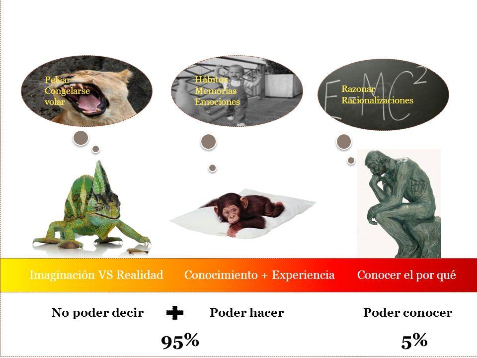 Pelear Congelarse volar Hábitos Memorias Emociones Razonar Racionalizaciones Imaginación VS Realidad Conocimiento + Experiencia Conocer el por qué No poder decirPoder hacerPoder conocer 95%5%