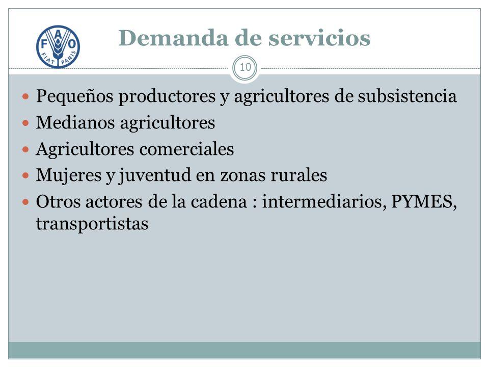 Demanda de servicios 10 Pequeños productores y agricultores de subsistencia Medianos agricultores Agricultores comerciales Mujeres y juventud en zonas rurales Otros actores de la cadena : intermediarios, PYMES, transportistas