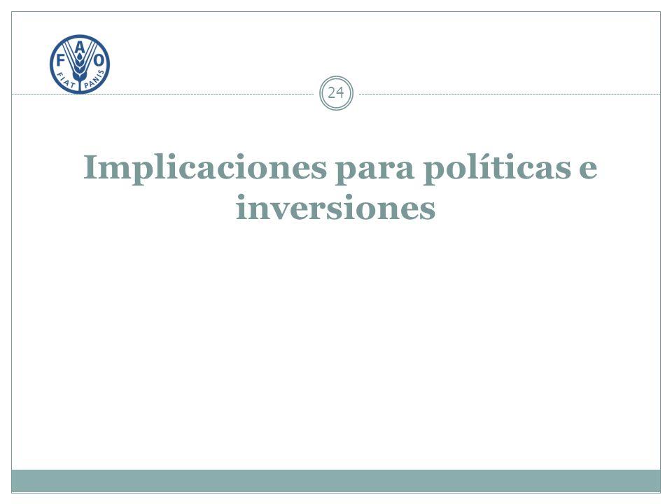 Implicaciones para políticas e inversiones 24