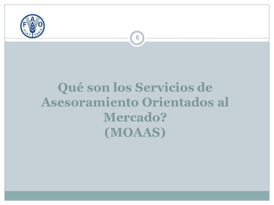 Qué son los Servicios de Asesoramiento Orientados al Mercado (MOAAS) 6