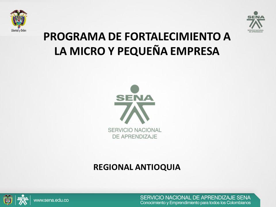 PROGRAMA DE FORTALECIMIENTO A LA MICRO Y PEQUEÑA EMPRESA REGIONAL ANTIOQUIA