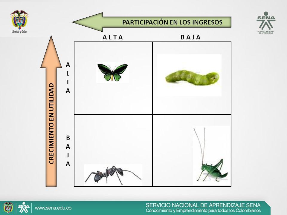 ESTRATEGIAS DE DIVERSIFICACIÓN Diversificación Concéntrica: Se presenta cuando se tiene la misma infraestructura o tecnología.