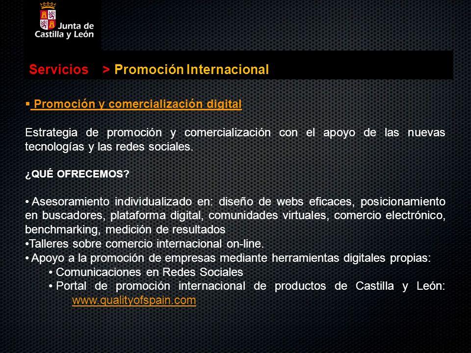 Servicios>Promoción Internacional Promoción y comercialización digital Promoción y comercialización digital Estrategia de promoción y comercialización
