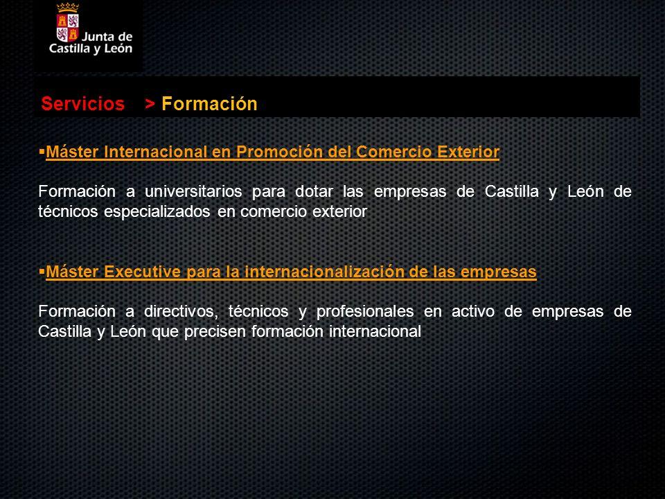 . Servicios>Formación Máster Internacional en Promoción del Comercio Exterior Formación a universitarios para dotar las empresas de Castilla y León de