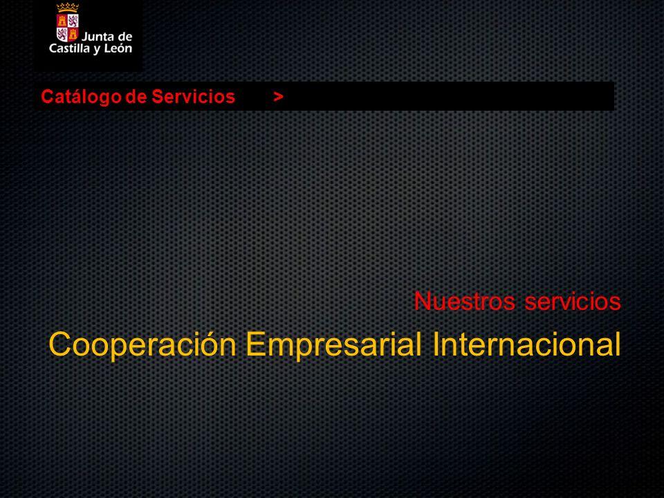 Catálogo de Servicios> Nuestros servicios Cooperación Empresarial Internacional