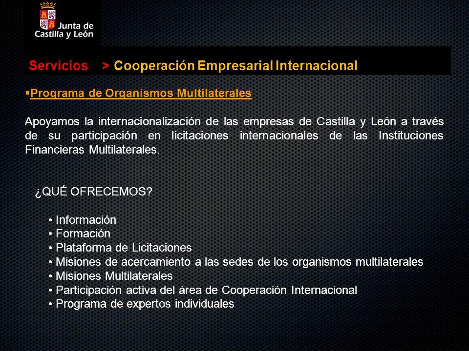 . Servicios>Cooperación Empresarial Internacional Programa de Organismos Multilaterales Programa de Organismos Multilaterales Apoyamos la internaciona