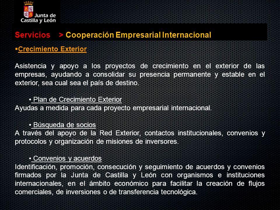 Servicios>Cooperación Empresarial Internacional Crecimiento Exterior Crecimiento Exterior Asistencia y apoyo a los proyectos de crecimiento en el exte