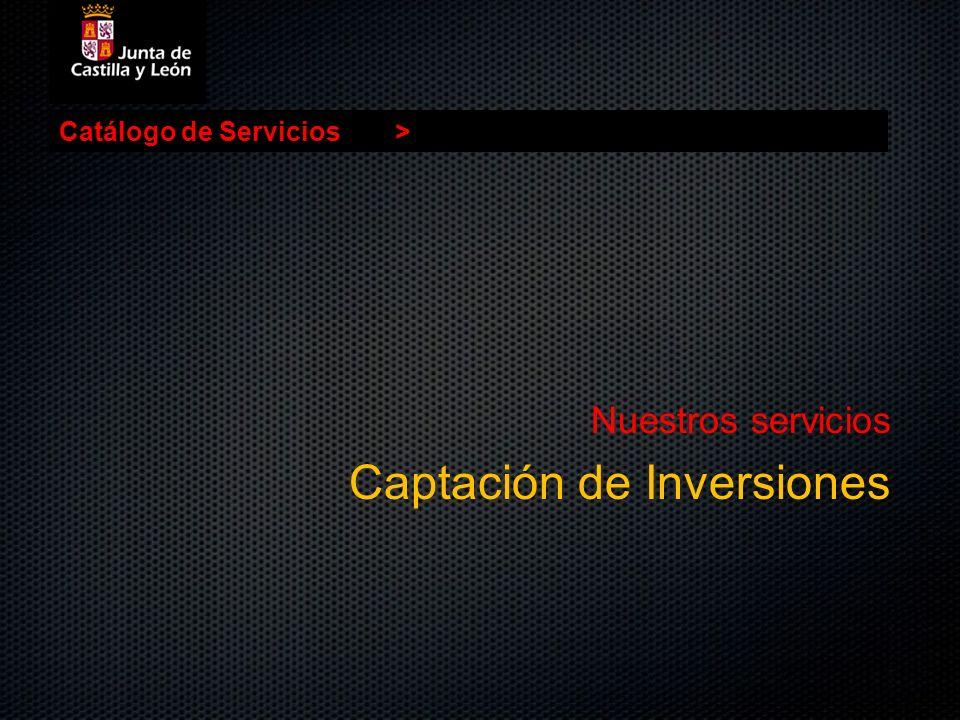 Catálogo de Servicios> Nuestros servicios Captación de Inversiones