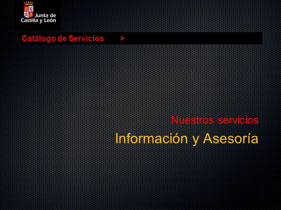 Catálogo de Servicios> Nuestros servicios Información y Asesoría