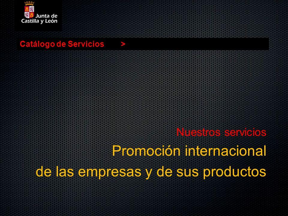 Catálogo de Servicios> Nuestros servicios Promoción internacional de las empresas y de sus productos