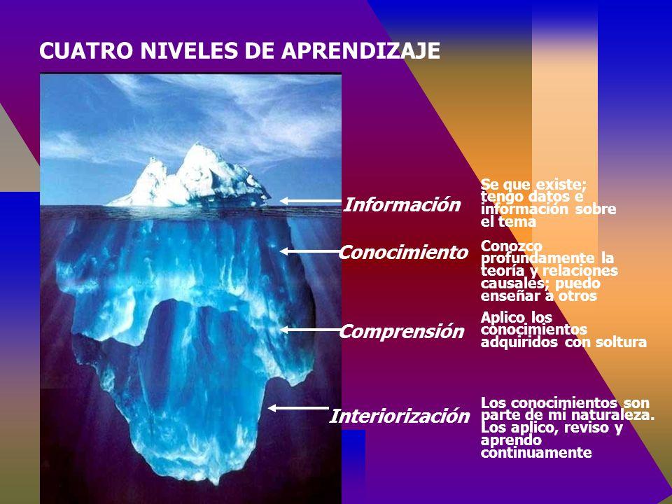Información Conocimiento Comprensión Interiorización Se que existe; tengo datos e información sobre el tema Conozco profundamente la teoría y relaciones causales; puedo enseñar a otros Aplico los conocimientos adquiridos con soltura Los conocimientos son parte de mi naturaleza.