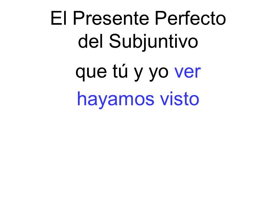 El Presente Perfecto del Subjuntivo que tú y yo ver hayamos visto