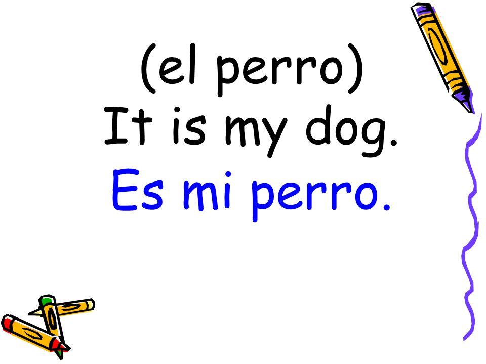 (el perro) It is my dog. Es mi perro.