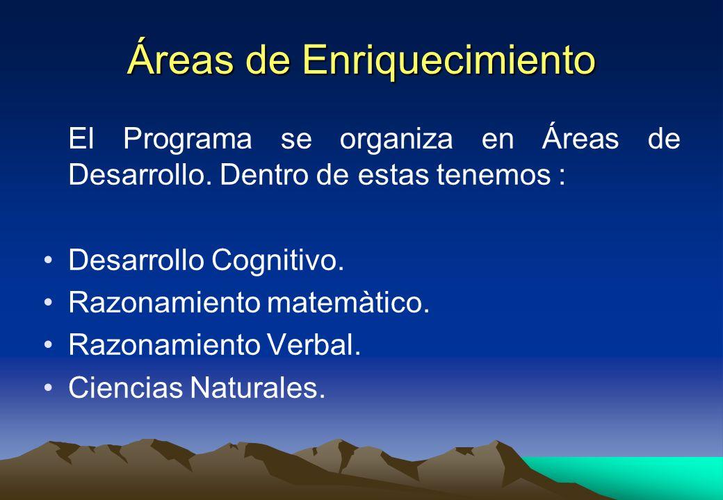 Áreas de Enriquecimiento El Programa se organiza en Áreas de Desarrollo. Dentro de estas tenemos : Desarrollo Cognitivo. Razonamiento matemàtico. Razo