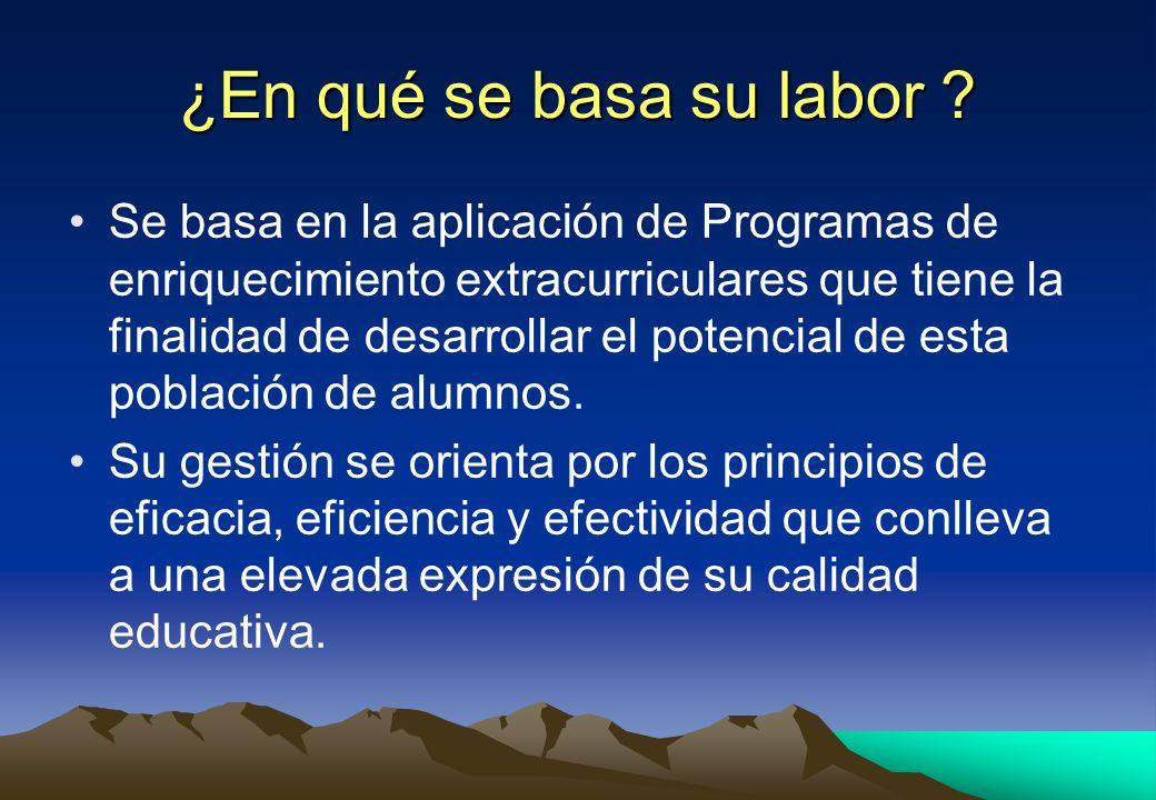 ¿En qué se basa su labor ? Se basa en la aplicación de Programas de enriquecimiento extracurriculares que tiene la finalidad de desarrollar el potenci