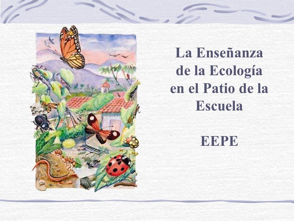 La Enseñanza de la Ecología en el Patio de la Escuela EEPE