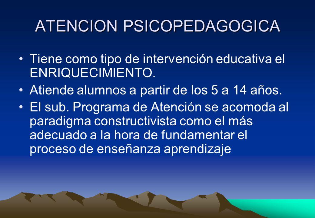 ATENCION PSICOPEDAGOGICA Tiene como tipo de intervención educativa el ENRIQUECIMIENTO. Atiende alumnos a partir de los 5 a 14 años. El sub. Programa d
