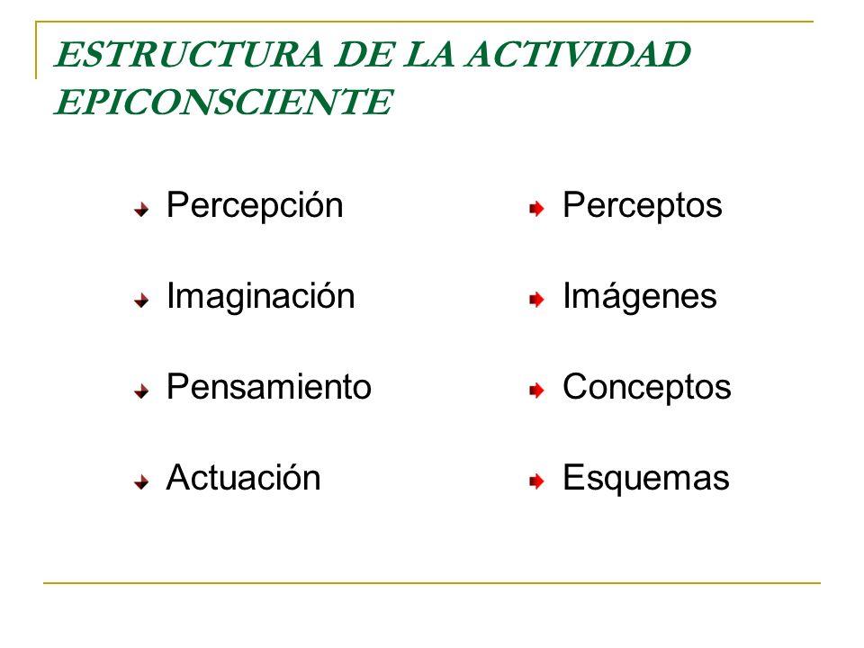 ESTRUCTURA DE LA ACTUACIÓN Esquema Es la estructura del plano epiconsciente que media entre el concepto y la actuación efectiva de la persona: se forma a partir de los procesos emotivos, productivos y volitivos de la conciencia Actuación Es el plano de la actividad epiconsciente en que los esquemas de anticipación se expresan en la actividad personal o la actuación objetiva de la persona
