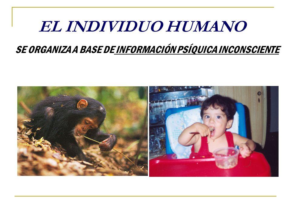 EL INDIVIDUO HUMANO SE ORGANIZA A BASE DE INFORMACIÓN PSÍQUICA INCONSCIENTE