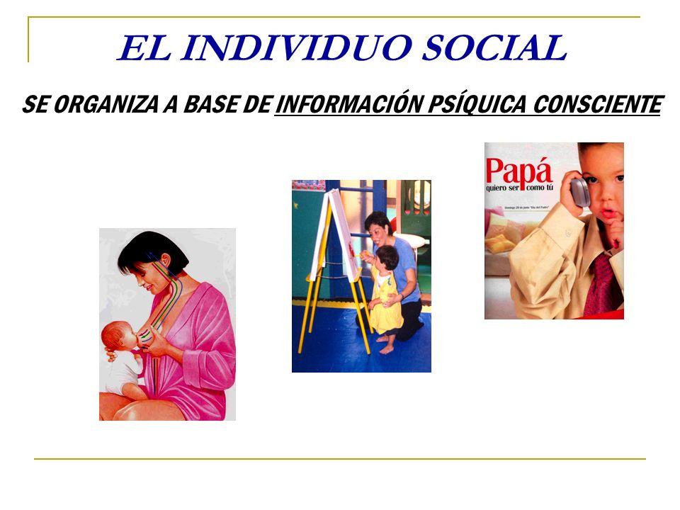 EL INDIVIDUO SOCIAL SE ORGANIZA A BASE DE INFORMACIÓN PSÍQUICA CONSCIENTE