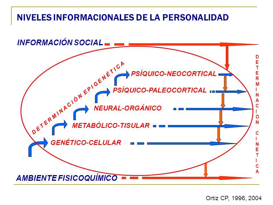 DETERMINACIÓNCINÉTICADETERMINACIÓNCINÉTICA D E T E R M I N A C I Ó N E P I G E N É T I C A AMBIENTE FISICOQUÍMICO GENÉTICO-CELULAR METABÓLICO-TISULAR