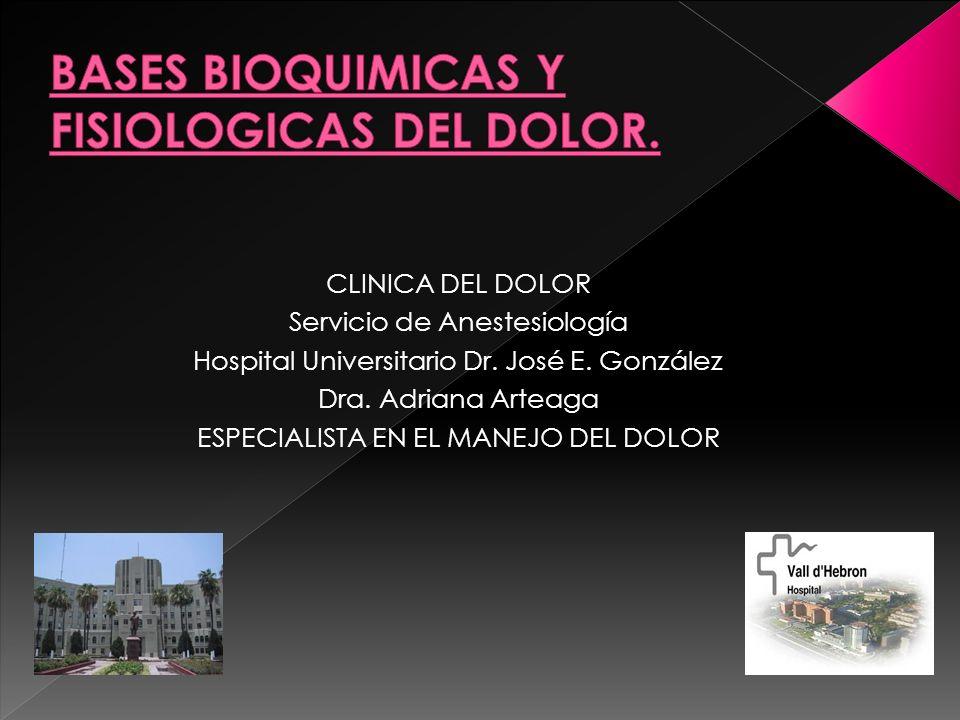 CLINICA DEL DOLOR Servicio de Anestesiología Hospital Universitario Dr. José E. González Dra. Adriana Arteaga ESPECIALISTA EN EL MANEJO DEL DOLOR