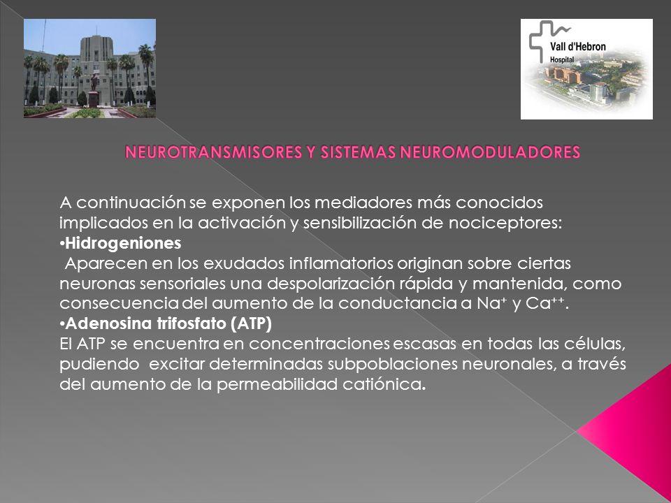A continuación se exponen los mediadores más conocidos implicados en la activación y sensibilización de nociceptores: Hidrogeniones Aparecen en los ex