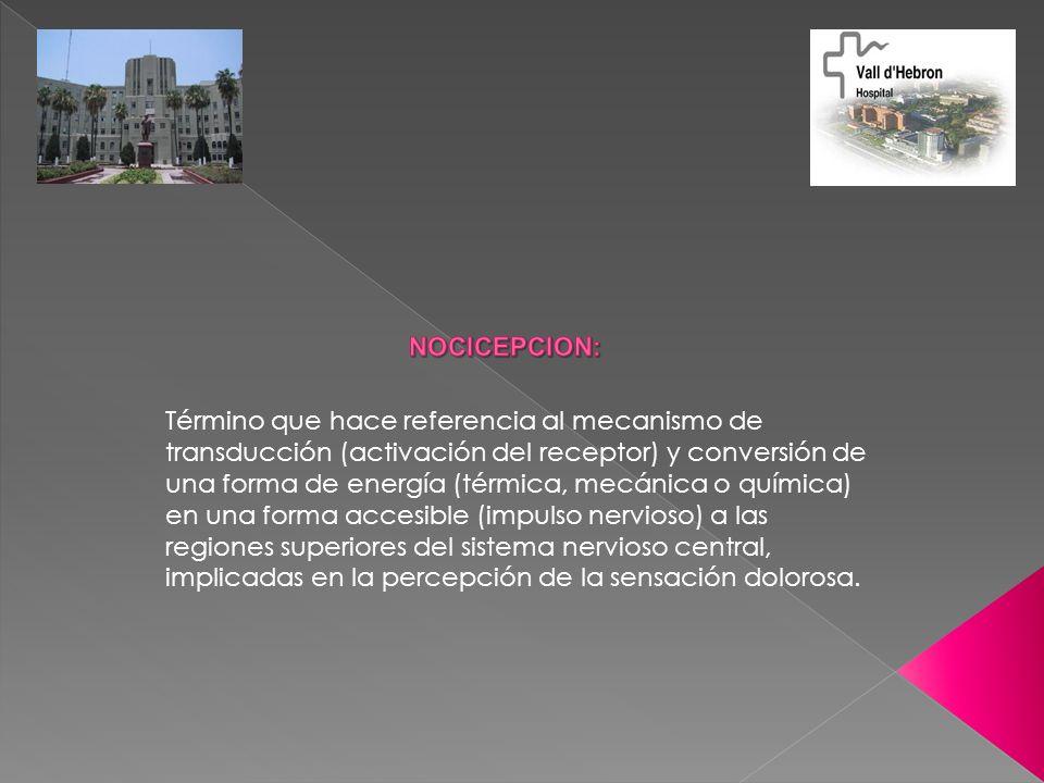 Término que hace referencia al mecanismo de transducción (activación del receptor) y conversión de una forma de energía (térmica, mecánica o química)