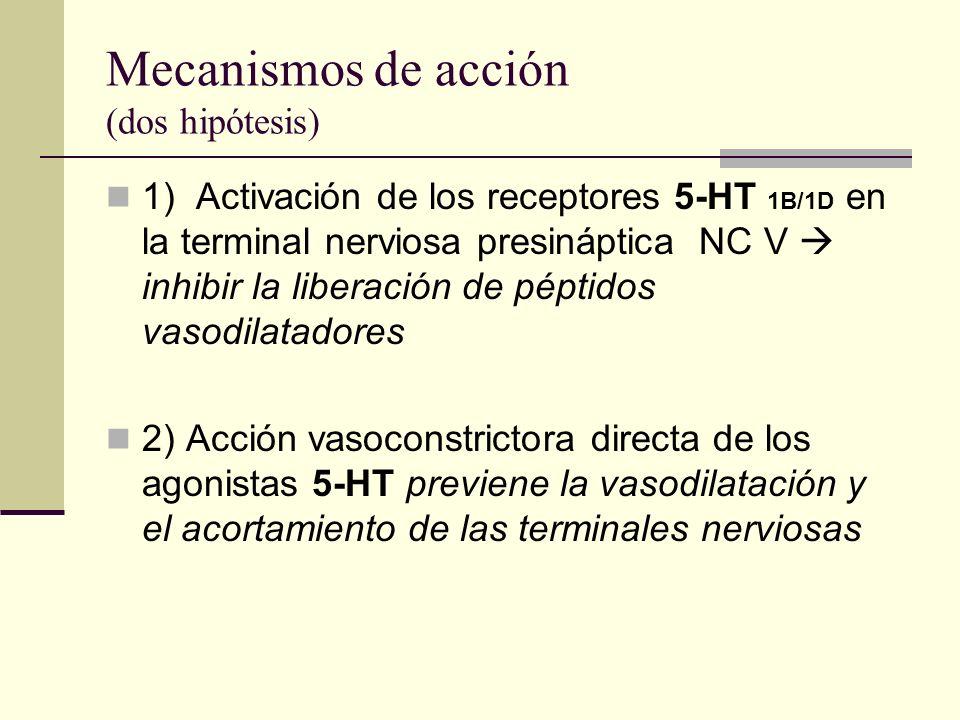 Mecanismos de acción (dos hipótesis) 1) Activación de los receptores 5-HT 1B/1D en la terminal nerviosa presináptica NC V inhibir la liberación de pép