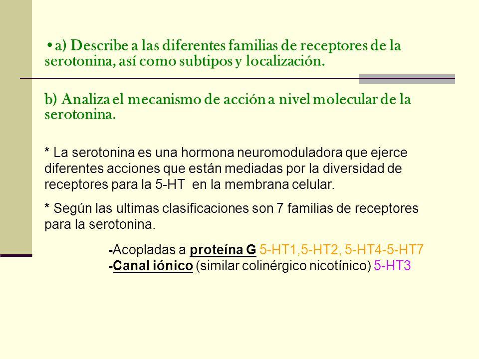a) Describe a las diferentes familias de receptores de la serotonina, así como subtipos y localización. b) Analiza el mecanismo de acción a nivel mole