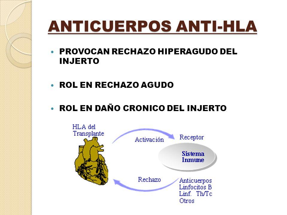 ANTICUERPOS ANTI-HLA PROVOCAN RECHAZO HIPERAGUDO DEL INJERTO ROL EN RECHAZO AGUDO ROL EN DAÑO CRONICO DEL INJERTO