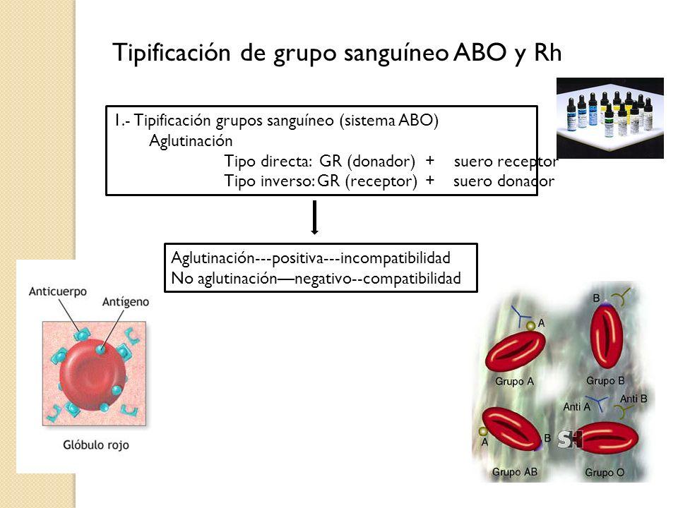Tipificación de grupo sanguíneo ABO y Rh 1.- Tipificación grupos sanguíneo (sistema ABO) Aglutinación Tipo directa: GR (donador) + suero receptor Tipo