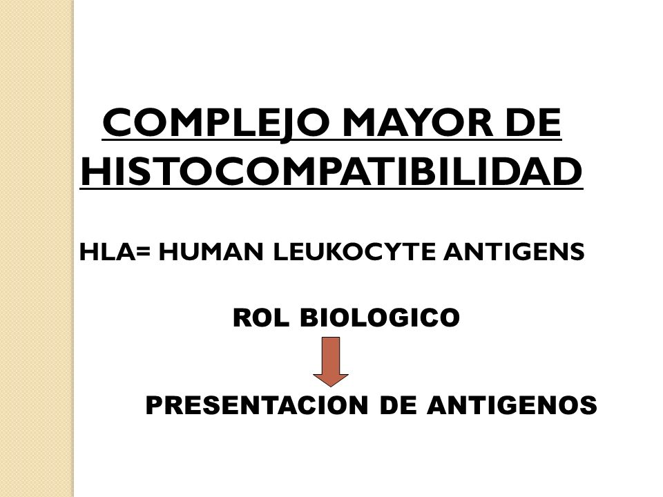 COMPLEJO MAYOR DE HISTOCOMPATIBILIDAD HLA= HUMAN LEUKOCYTE ANTIGENS ROL BIOLOGICO PRESENTACION DE ANTIGENOS