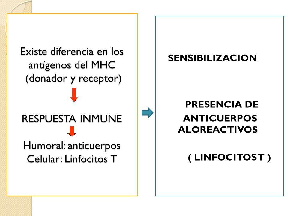 Existe diferencia en los antígenos del MHC (donador y receptor) RESPUESTA INMUNE Humoral: anticuerpos Celular: Linfocitos T SENSIBILIZACION PRESENCIA