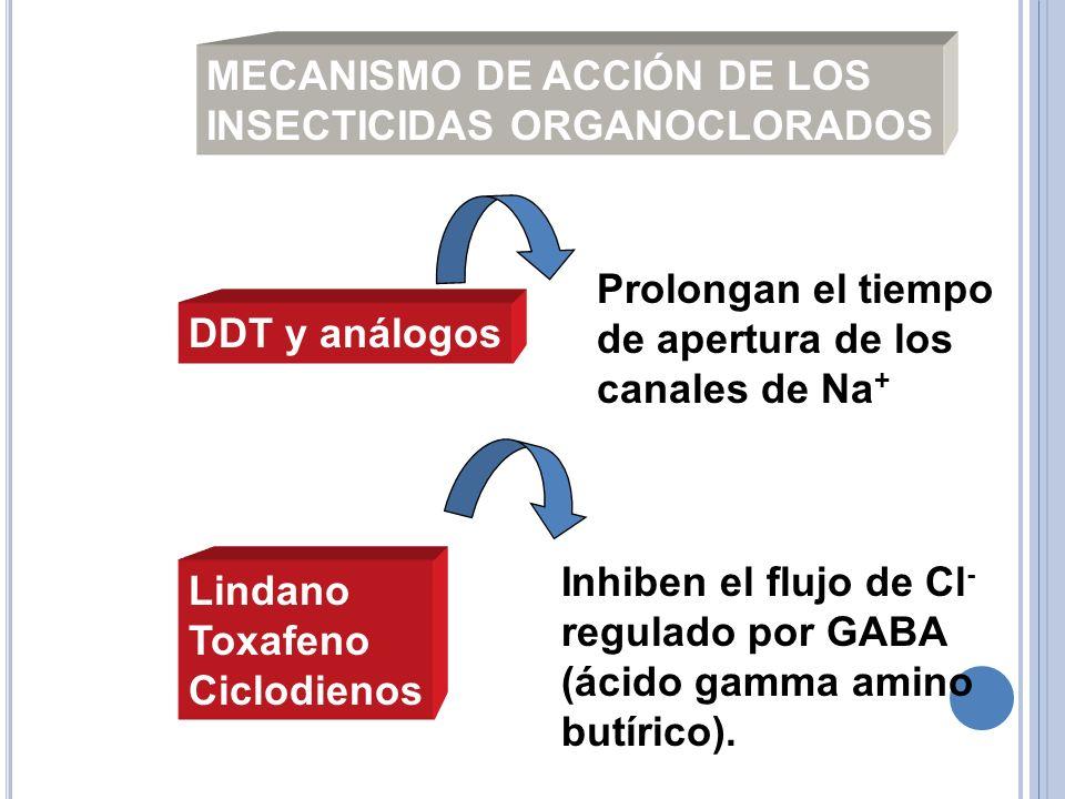 Prolongan el tiempo de apertura de los canales de Na + Inhiben el flujo de Cl - regulado por GABA (ácido gamma amino butírico). DDT y análogos Lindano