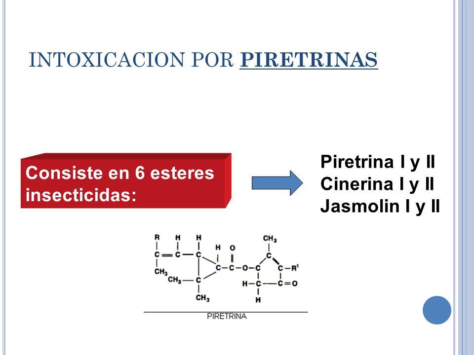 INTOXICACION POR PIRETRINAS Consiste en 6 esteres insecticidas: Piretrina I y II Cinerina I y II Jasmolin I y II