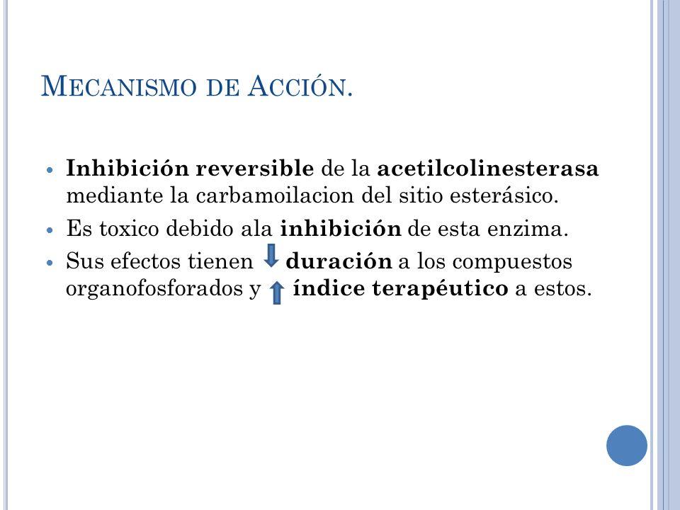 M ECANISMO DE A CCIÓN. Inhibición reversible de la acetilcolinesterasa mediante la carbamoilacion del sitio esterásico. Es toxico debido ala inhibició