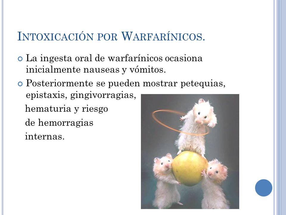 I NTOXICACIÓN POR W ARFARÍNICOS. La ingesta oral de warfarínicos ocasiona inicialmente nauseas y vómitos. Posteriormente se pueden mostrar petequias,