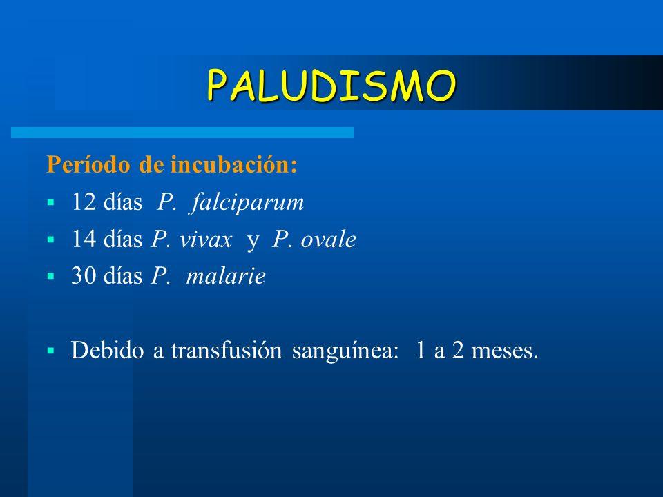 PALUDISMO Período de incubación: 12 días P. falciparum 14 días P. vivax y P. ovale 30 días P. malarie Debido a transfusión sanguínea: 1 a 2 meses.