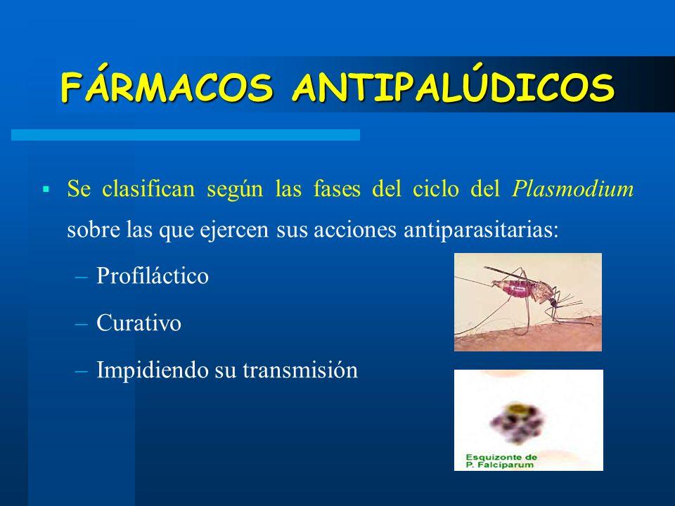 FÁRMACOS ANTIPALÚDICOS Se clasifican según las fases del ciclo del Plasmodium sobre las que ejercen sus acciones antiparasitarias: –Profiláctico –Cura