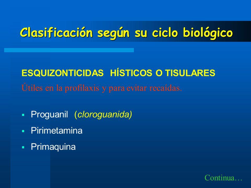 ESQUIZONTICIDAS HÍSTICOS O TISULARES Útiles en la profilaxis y para evitar recaídas. Proguanil (cloroguanida) Pirimetamina Primaquina Continua… Clasif