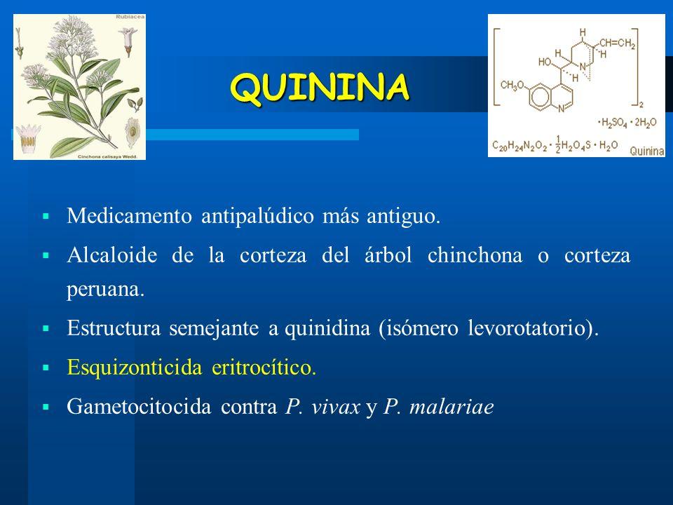 QUININA Medicamento antipalúdico más antiguo. Alcaloide de la corteza del árbol chinchona o corteza peruana. Estructura semejante a quinidina (isómero