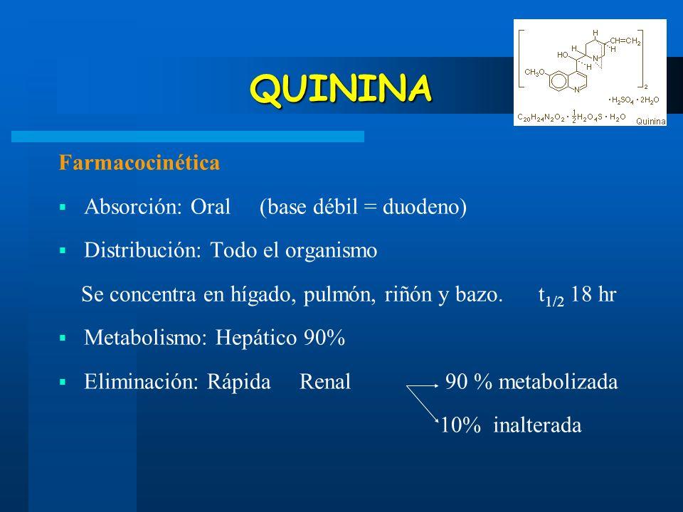 QUININA Farmacocinética Absorción: Oral (base débil = duodeno) Distribución: Todo el organismo Se concentra en hígado, pulmón, riñón y bazo. t 1/2 18