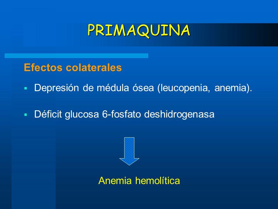 PRIMAQUINA Efectos colaterales Depresión de médula ósea (leucopenia, anemia). Déficit glucosa 6-fosfato deshidrogenasa Anemia hemolítica
