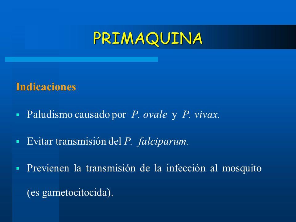 PRIMAQUINA Indicaciones Paludismo causado por P. ovale y P. vivax. Evitar transmisión del P. falciparum. Previenen la transmisión de la infección al m