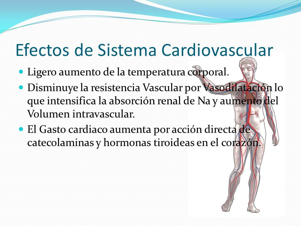 Efectos de Sistema Cardiovascular Ligero aumento de la temperatura corporal.