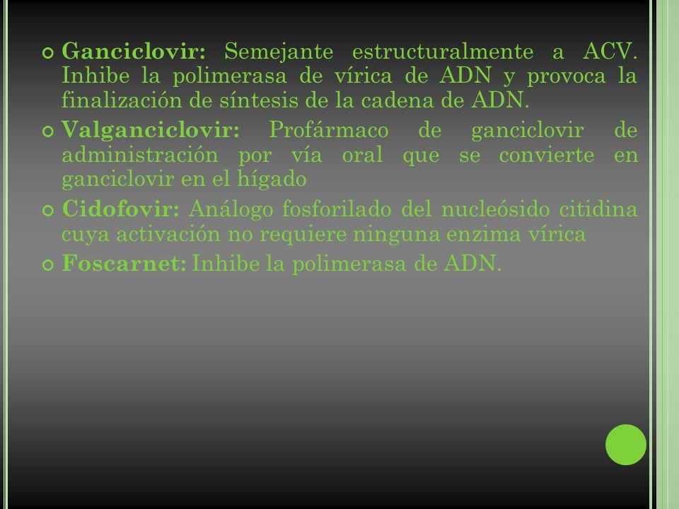Ganciclovir: Semejante estructuralmente a ACV. Inhibe la polimerasa de vírica de ADN y provoca la finalización de síntesis de la cadena de ADN. Valgan
