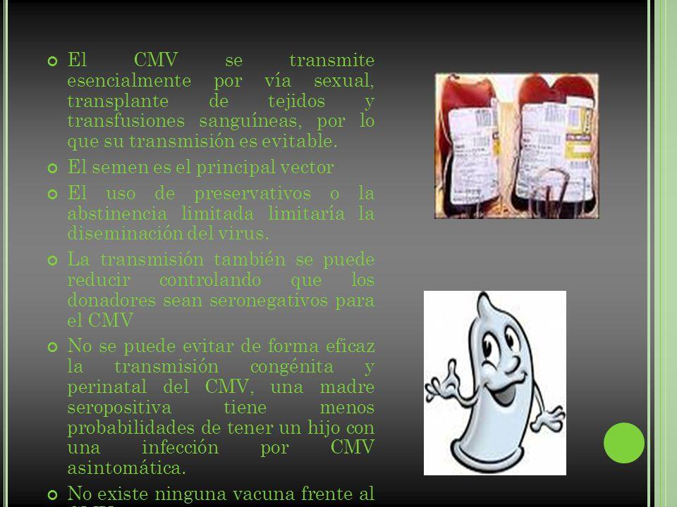 El CMV se transmite esencialmente por vía sexual, transplante de tejidos y transfusiones sanguíneas, por lo que su transmisión es evitable. El semen e