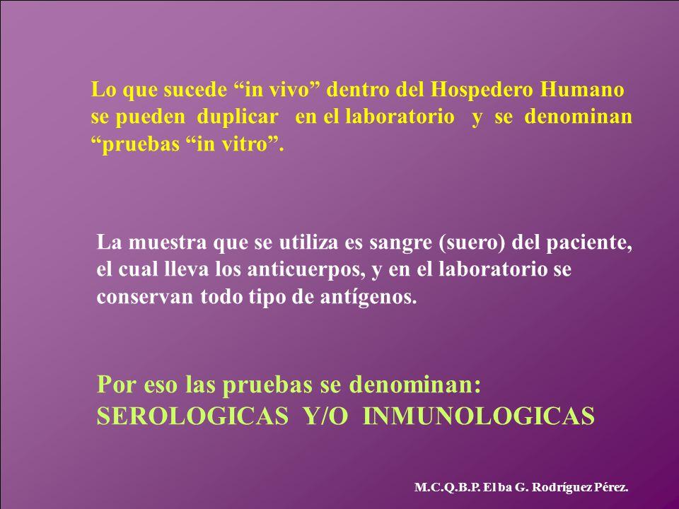 M.C.Q.B.P. El ba G. Rodríguez Pérez. Lo que sucede in vivo dentro del Hospedero Humano se pueden duplicar en el laboratorio y se denominan pruebas in